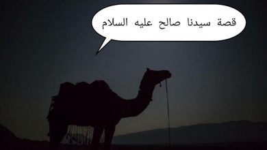 Photo of ملخص قصة صالح عليه السلام والدروس والعبر المستفادة منها