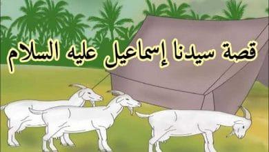 Photo of قصة سيدنا إسماعيل كاملة والدروس المستفادة منها