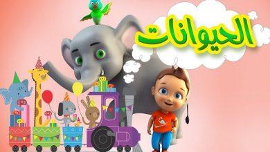 Photo of تردد قناة كراميش للأطفال 2020 لمتابعة برامج وأغاني القناة